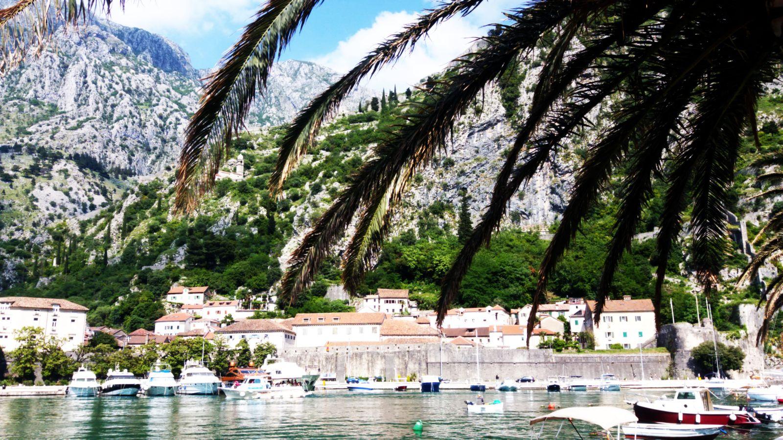W Zatoce Kotorskiej mamy góry, morze i palmy na jednym obrazku