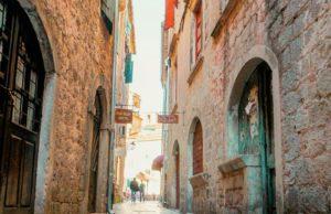 Największy koci gentelman w Kotorze.