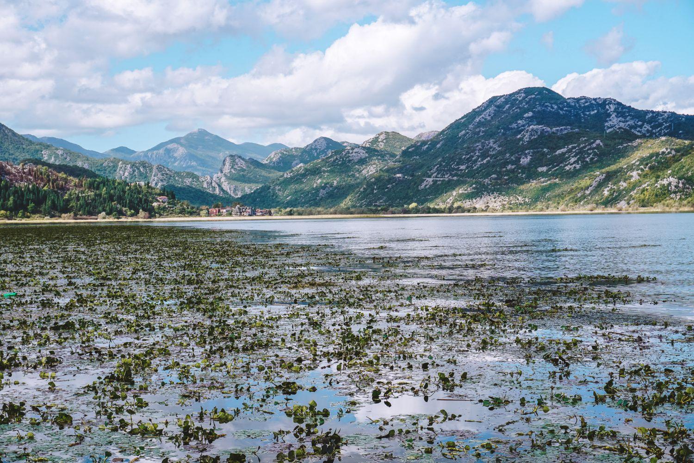 Jesienią bledną kolory i podnosi się poziom wody na jeziorze.