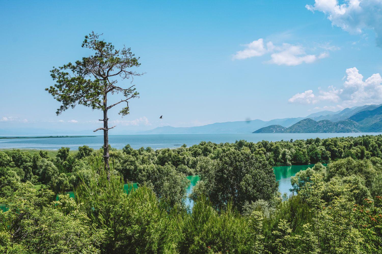 Punkt widokowy ze wzgórza Monastyru Vranjina.