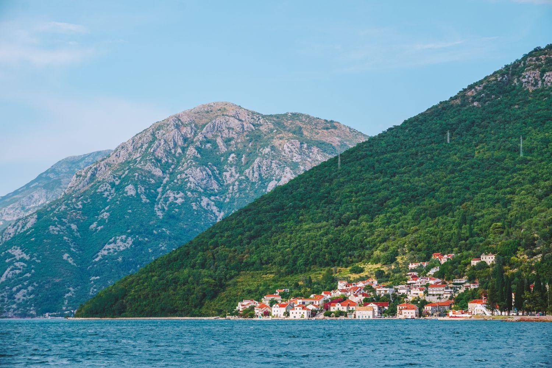 Zaroka Kotorska.
